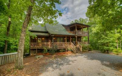 Mineral Bluff Single Family Home For Sale: 185 Rooks Road