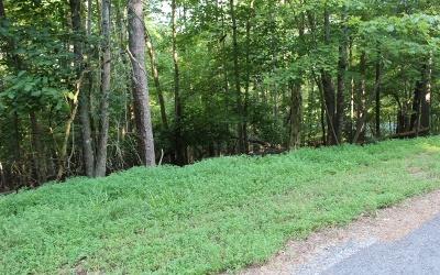 Ellijay Residential Lots & Land For Sale: Tara Drive Lt 67