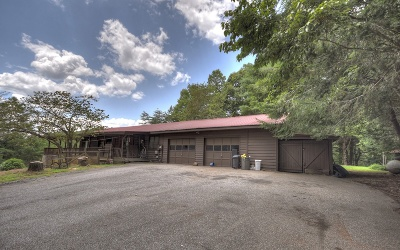 Mineral Bluff Single Family Home For Sale: 116 Mountain Rivers Lane