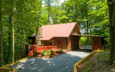 Blue Ridge Single Family Home For Sale: 871 Laurel Ridge Rd