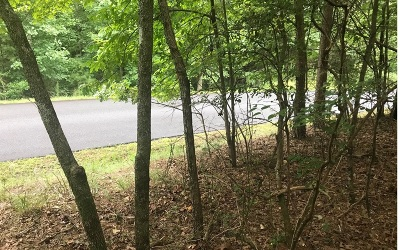 Ellijay Residential Lots & Land For Sale: Lt541 Tonto Drive