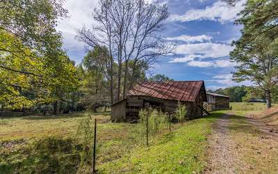Ellijay Single Family Home For Sale: 640 Ralston Road