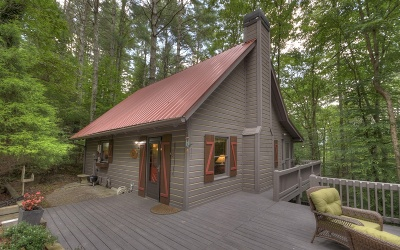 Blue Ridge Single Family Home For Sale: 439 Conley Branch Rd.