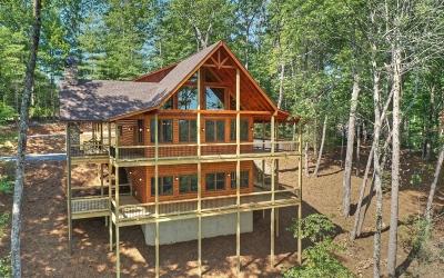 Blue Ridge Single Family Home For Sale: 22 Big Creek Overlook