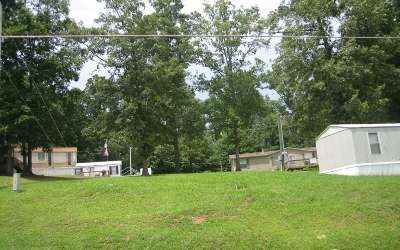 Fannin County Commercial For Sale: 22 Tankersley