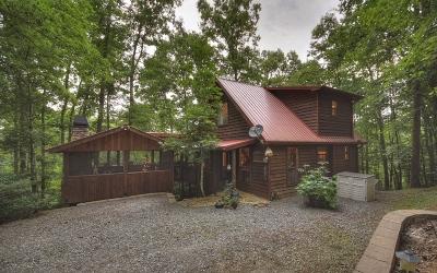 Fannin County Single Family Home For Sale: 33 Roaring Creek Drive