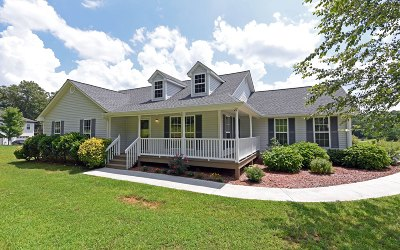 Blairsville Single Family Home For Sale: 82 Fountain Oaks Drive