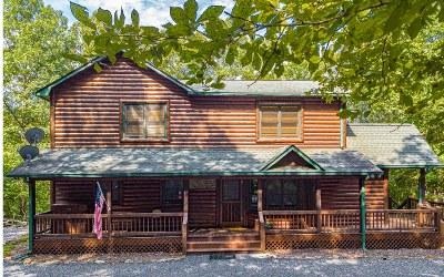 Fannin County Single Family Home For Sale: 220 Cross Creek