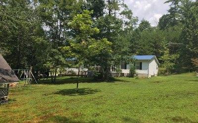 Ellijay Single Family Home For Sale: 274 Pleasant Hill Trail