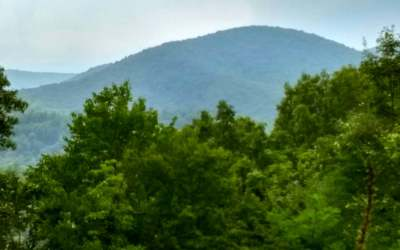 Ellijay Residential Lots & Land For Sale: Tr5 Fox Mountain Rd.