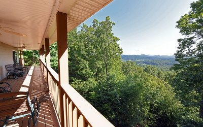Blairsville Single Family Home For Sale: 636 Black Forest Lane