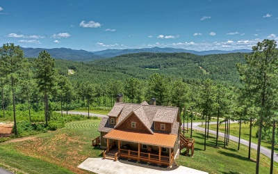 Blairsville Single Family Home For Sale: 108 Stables Rise