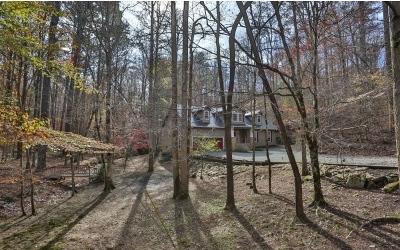 Ellijay Single Family Home For Sale: 434 Lemmon Drive
