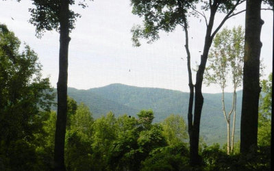 Ellijay Residential Lots & Land For Sale: 76&77 Walnut Ridge Lots