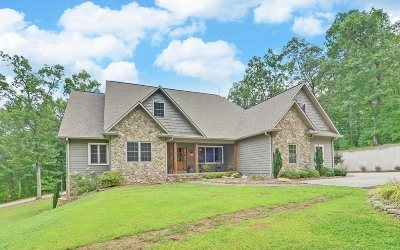Blairsville Single Family Home For Sale: 159 Apple Blossom Road