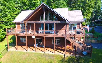 Hayesville Single Family Home For Sale: 201 Longview Drive