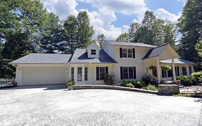Blairsville Single Family Home For Sale: 114 Bryant Cv Road