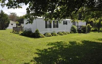 Cherokee County Single Family Home For Sale: 357 Connaheta Avenue