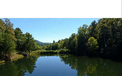 Ellijay Residential Lots & Land For Sale: 358 Waleska Lane