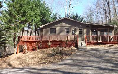 Blairsville Single Family Home For Sale: 267 Butternut Lane