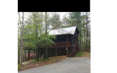 Mineral Bluff Single Family Home For Sale: 263 Indian Trace