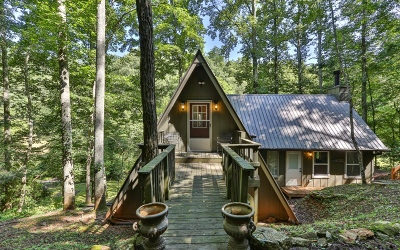 Gilmer County Single Family Home For Sale: 227 Big Creek Trail