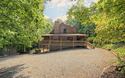 Fannin County Single Family Home For Sale: 212 Sawmill Circle