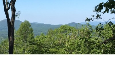 Union County Residential Lots & Land For Sale: #296 Thirteen Hundred