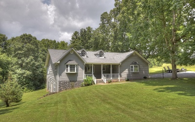 Blue Ridge Single Family Home For Sale: 362 Old Dial Road