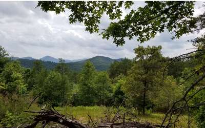 Hayesville Residential Lots & Land For Sale: Lot 4 Old Dyer Dr