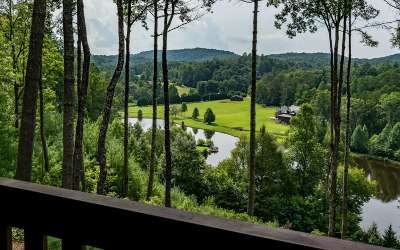 Mineral Bluff Single Family Home For Sale: 221 Green Valley Trail