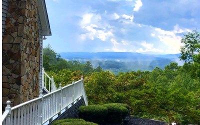 Fannin County Single Family Home For Sale: 185 Katydid Road