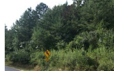Brasstown Residential Lots & Land For Sale: Green Cove