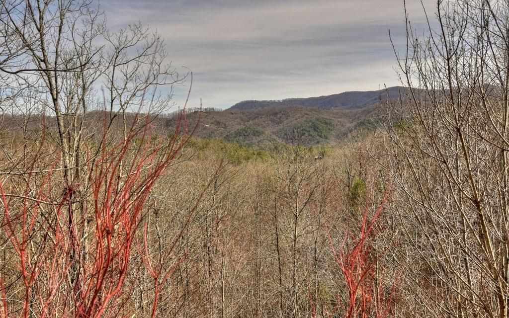 290 Left Turn, Blue Ridge, GA   MLS# 290886   Carolina