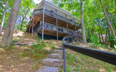 Blairsville Single Family Home For Sale: 3739 Pat Colwell Road