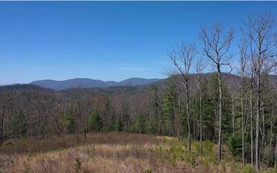 Ellijay Residential Lots & Land For Sale: Old Bucktown Rd