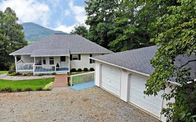 Blairsville Single Family Home For Sale: 65 East View Drive