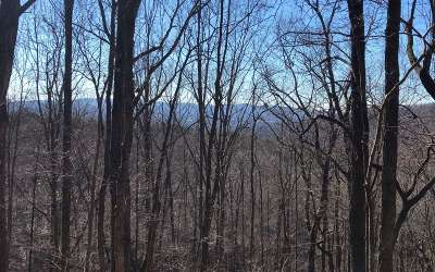 Ellijay Residential Lots & Land For Sale: Scrougetown Road