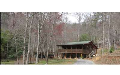 Brasstown Single Family Home For Sale: 1687 Greasy Creek Rd