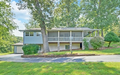 Hiawassee Single Family Home For Sale: 1012 Lakeview Acres