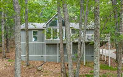 Pickens County Single Family Home For Sale: 184 Panorama Point