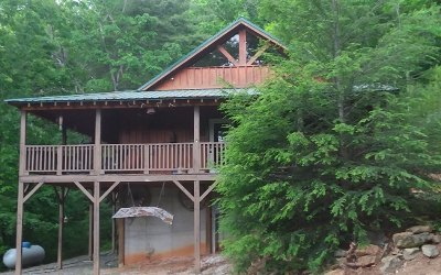 Blue Ridge Single Family Home For Sale: 1450 Ritchie Creek