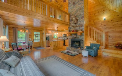 Ellijay Single Family Home For Sale: 48 Huron Court