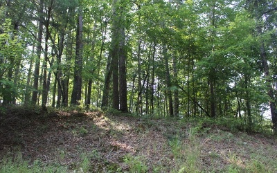 Ellijay Residential Lots & Land For Sale: Myna Drive Lts 971+
