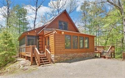 Fannin County Single Family Home For Sale: 606 Turkey Trot Road