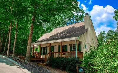 Ellijay Single Family Home For Sale: 25 Colgate Ct