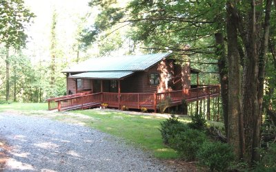 Fannin County Single Family Home For Sale: 82 Dawgs Drive