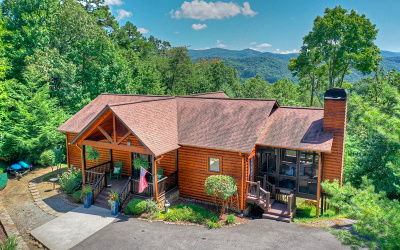 Blue Ridge Single Family Home For Sale: 330 Choctaw Ridge Road