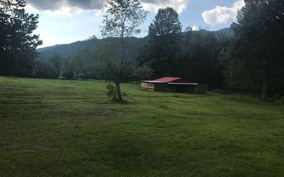 Hayesville Residential Lots & Land For Sale: 7.28a 11059 Hwy 64 East