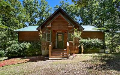 Hayesville Single Family Home For Sale: 311 Dick Jones Rd
